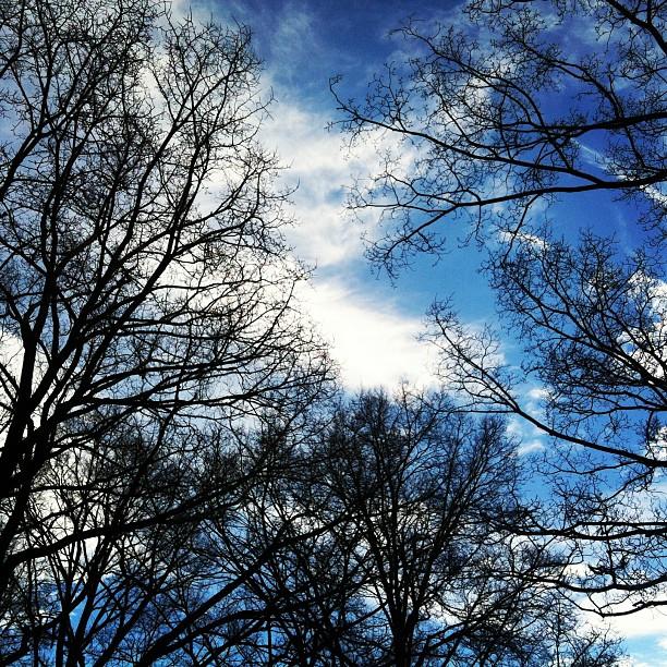 Angkasa, merdeka langit biru ~Santosa